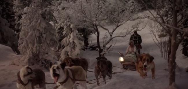 Кадр из фильма Зов предков 2020